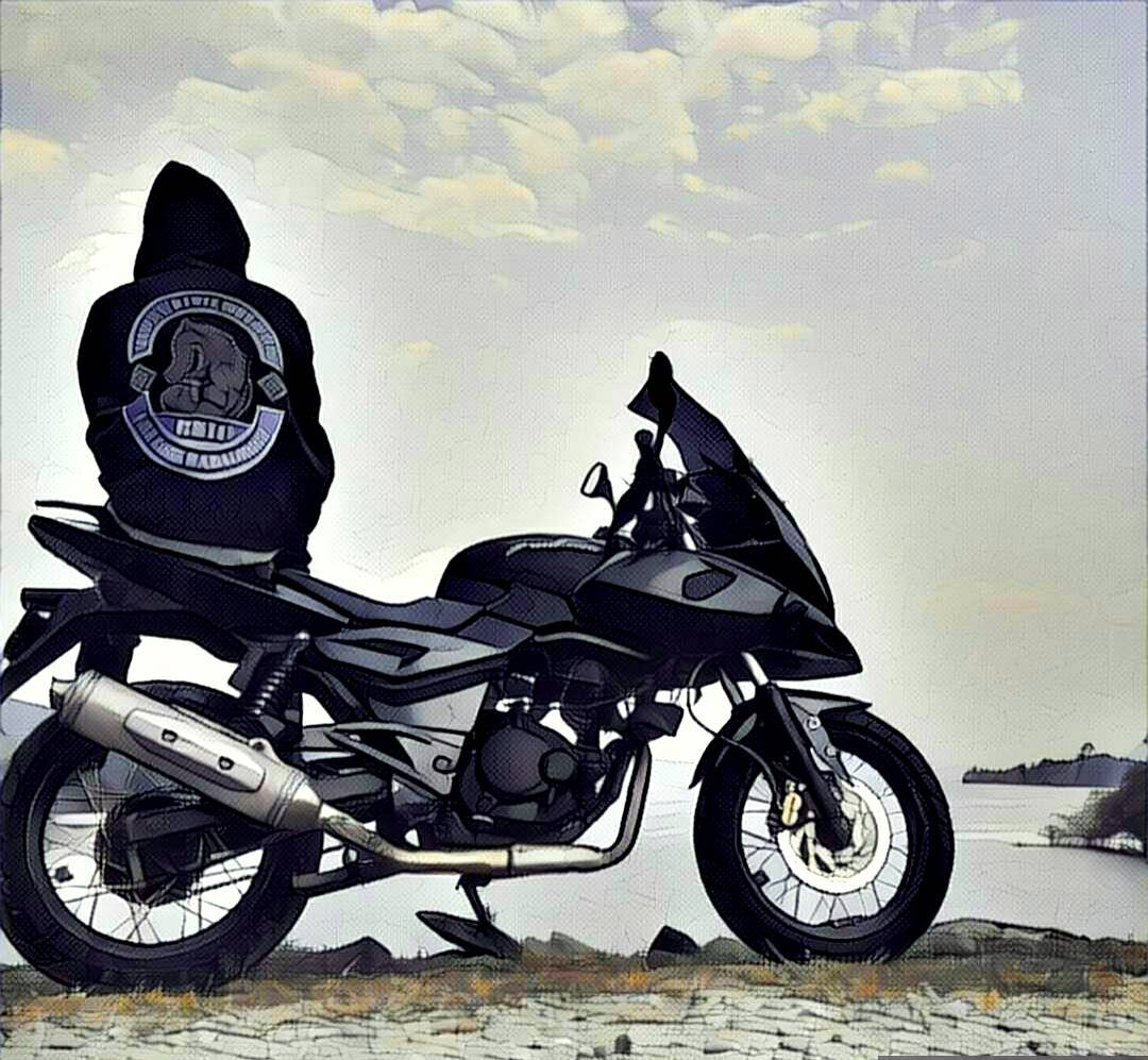 Pulsar 220 modified adventure