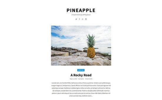 simple light Pineapple theme
