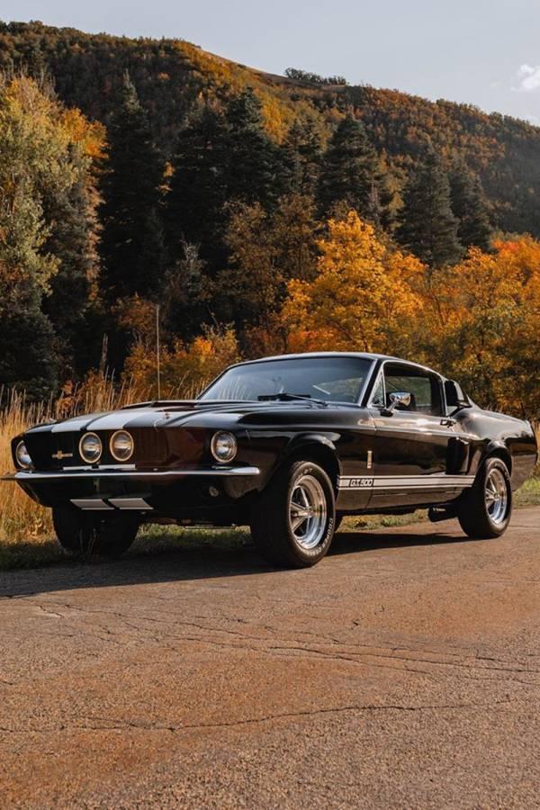 Vintage 67 Mustang