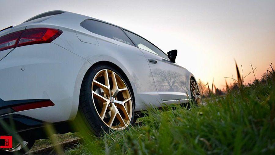 golden alloy wheels borbet